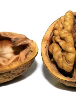 Nutritious Walnuts, Pure Walnuts without Shell